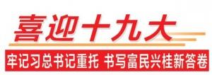 【喜迎十九大】广西:协调共进 行稳致远