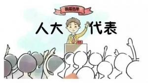 平果县坡造镇人大:建言献策助推各项事业出成效