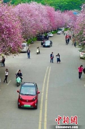 广西2020新能源汽车年产销超十万