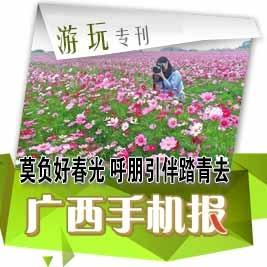 【游玩专刊】广西鲜花烂漫赏春色正当时
