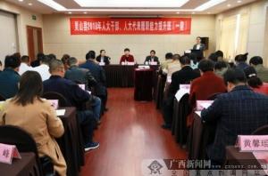 灵山县人大代表履职能力提升培训开班