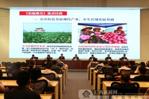 南宁加快县域经济发展 2020人均可支配收入31000元