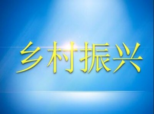 广西实施乡村振兴三年行动计划