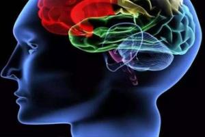 新型纳米粒子可同时将两种药物送到大脑肿瘤部位