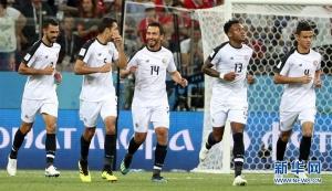 俄罗斯世界杯E组:哥斯达黎加队庆祝球队第二粒进球