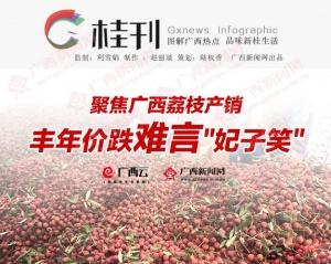 【桂刊】聚焦广西荔枝产销: 丰年价跌难言
