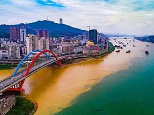 """7月3日焦点图:梧州再现""""鸳鸯秀水世无双""""的奇观"""