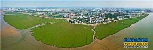 防城港市加快建设生态园林城市步伐
