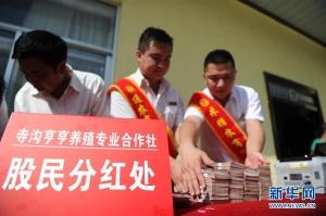 """陕西省榆林市:""""合作社给咱分红了!"""""""