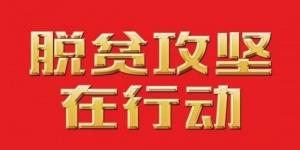 【脱贫攻坚在行动】贵州石阡:荒山变成产业园 美了生态富了百姓
