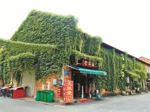 发现南宁的美:绿藤爬满楼 夏日送清凉(高清图集)