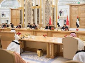 习近平同阿联酋副总统兼总理、阿布扎比王储举行会谈