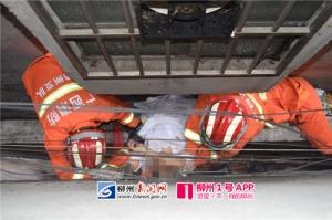 一女子从6楼坠下 在墙夹缝中被救出已无生命迹象