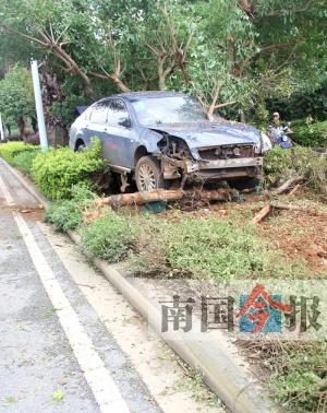 保险杠被撞飞! 柳州小轿车超车失控撞进花圃