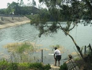 8月14日焦点图:记者走访还原来宾3孩童溺水事故全程