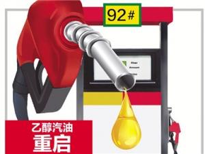 8月23日焦点图:下月起你的车可能要喝乙醇汽油了