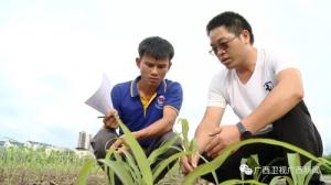 广西卫视:论坛主题鲜明特色突出 服务中国—东盟全方位合作
