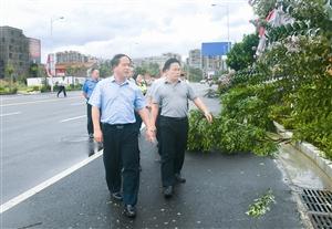 全桂寿检查受台风灾害影响情况和应急处置工作
