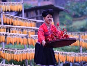 高清组图:桂林龙胜多彩民俗庆丰收