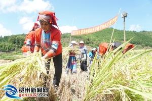 钟山县举办多项活动为农民丰收喝彩!