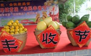 来宾多个县(区)举办活动庆祝中国农民丰收节