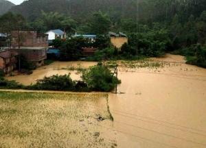 高清:广西局地强降雨致灾情 隆安农田厂棚被淹没
