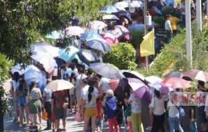 广西多个景区启动应急措施分流游客