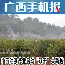 广西手机报10月9日下午版