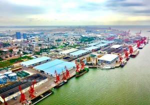 [来自壮乡千里边境的报告]500强深耕防城港