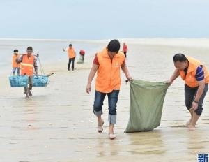 福建晋江:海滩义工 清理垃圾