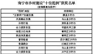 """南宁市乡村建设""""十佳范例""""名单出炉 有你家乡吗"""