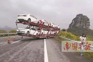 一只马蜂飞来捣乱导致车辆失控 驾驶员损失上万元