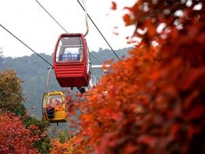 京城西山秋色��