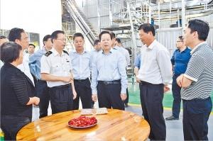 刘有明到龙州调研项目建设
