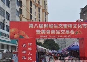 """农行柳城支行积极做好""""节会""""金融服务"""