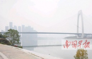 12日南宁市气象台发布今年下半年首个大雾预警