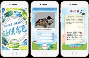 广西新闻网携手全国网媒发出倡议书:《让候鸟飞》