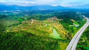 防城港推进园博园项目建设 积极创建国家园林城市