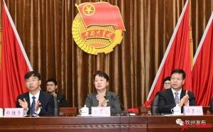 共青团钦州市第五次代表大会开幕