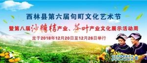 西林沙糖桔-茶叶产业文化展示活动周12月下旬举办