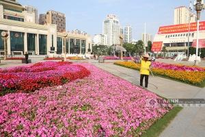 """南宁民族广场装扮一新迎大庆 市民游客纷纷""""打卡"""""""