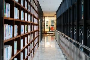 ag电子游戏哪个最会爆图书馆地方民族文献中心:让人沉醉的书香世界