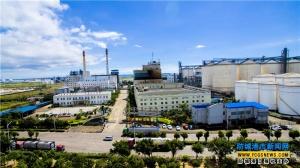 防城港已成為全國最大食用植物油籽加工基地之一