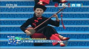 崇左市:天琴弹唱·木棉花开红似火