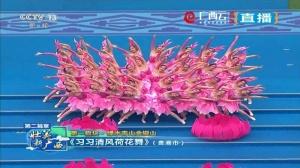 贵港市:习习清风荷花舞