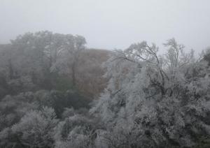雨水卷土重来广西冷到朝朝暮暮 冷风刺骨注意保暖