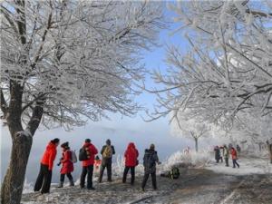 吉林:雾凇美景