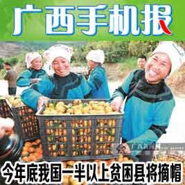 广西手机报12月14日下午版