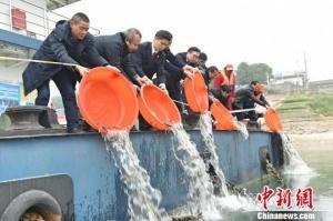 长江中上游最大非法捕捞水产品刑事附带民事公益诉讼案宣判
