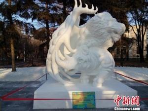 """黑龙江省29所高校学生以雪塑造""""冬之韵""""(组图)"""
